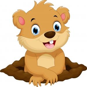 Dibujo de una marmota simpática