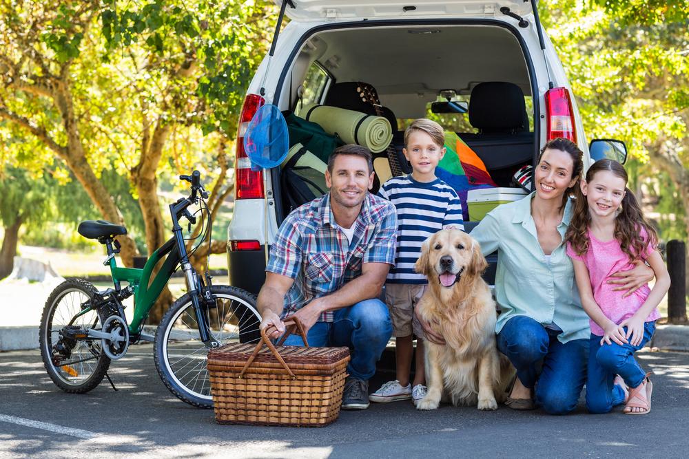 Viajar con niños y perro